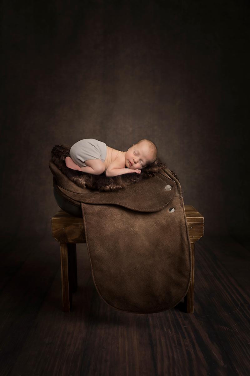newborn-boy-saddle-horse-theme