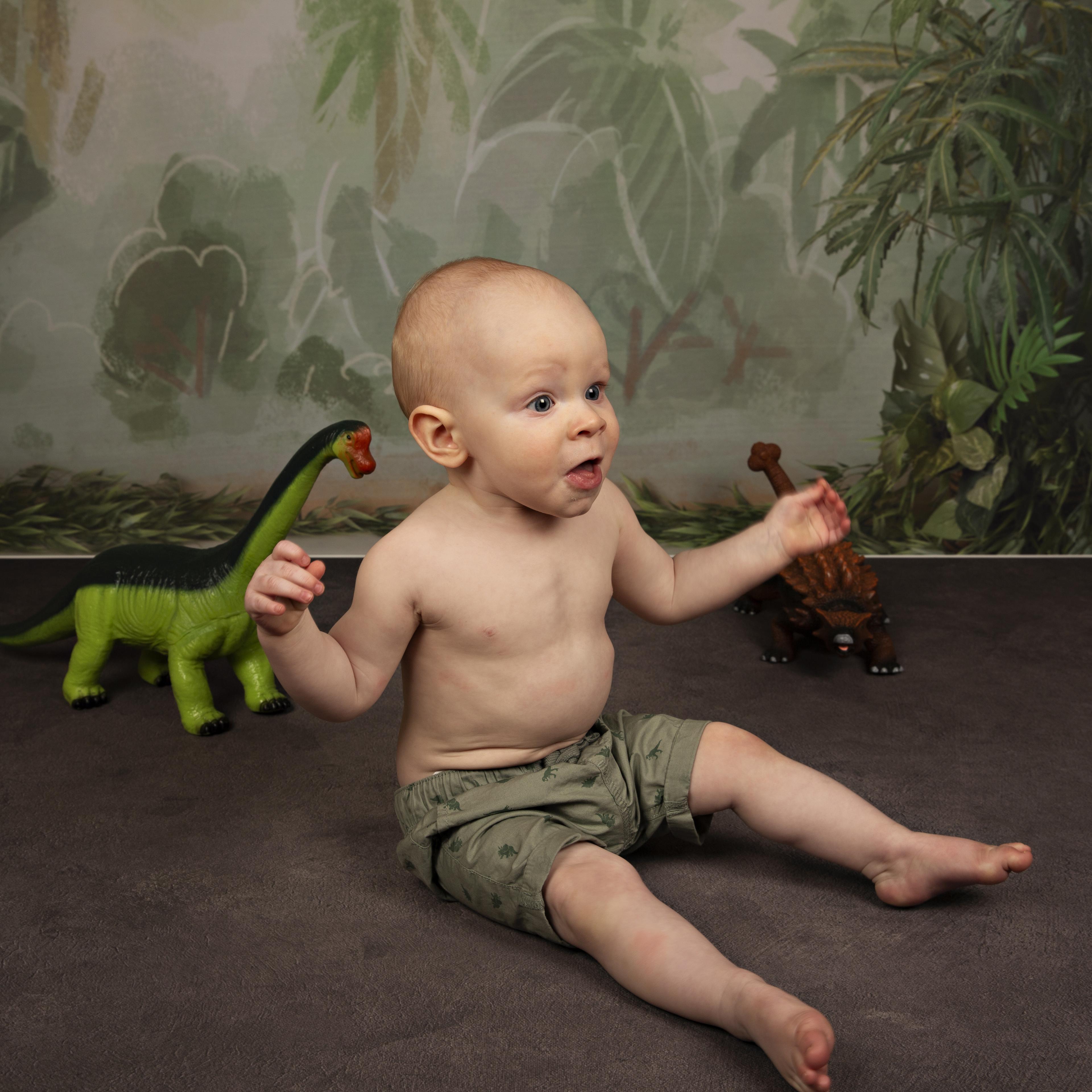 sitter-boy-dinosour-backdrop
