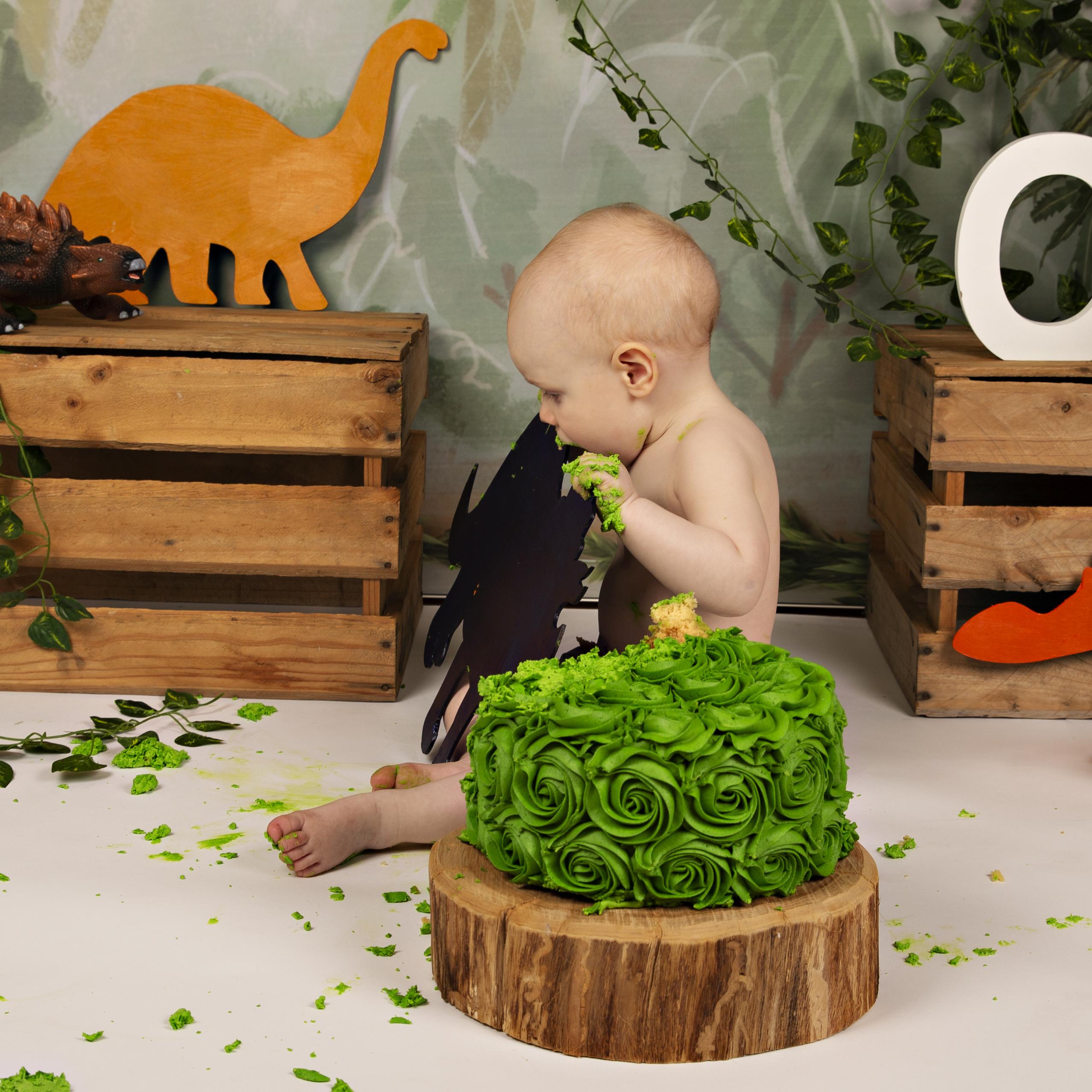 cake-smash-dinosour