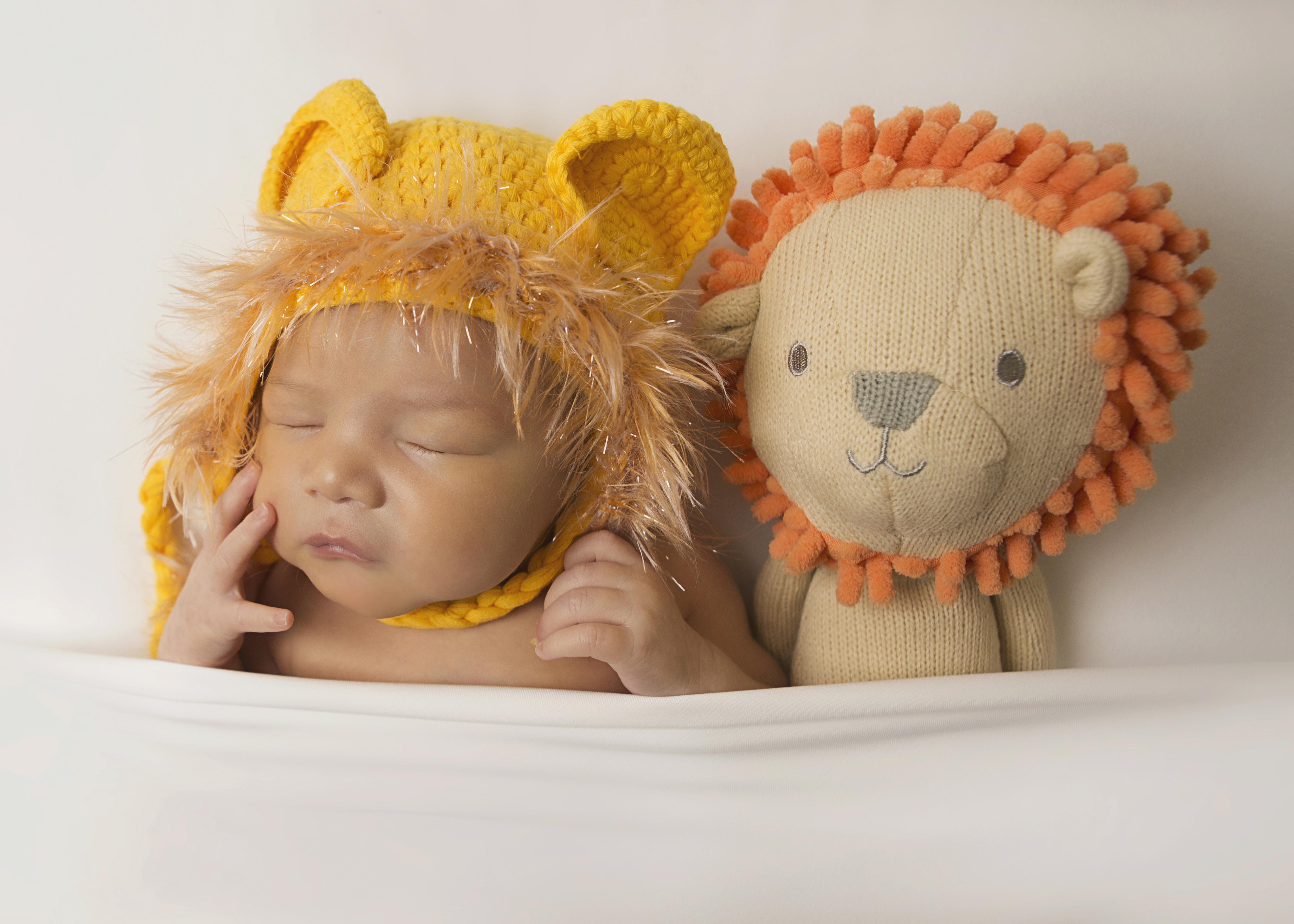 newborn-lion