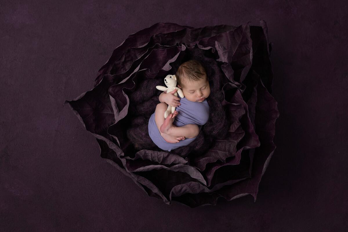 Flower Newborn Photographer Sydney
